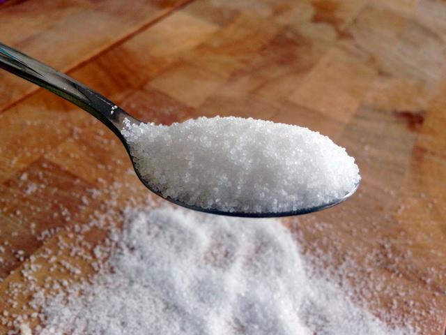 Sugar hippocampus